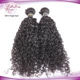 Cabelo Curly brasileiro de tecelagem por atacado da extensão do cabelo para a trança