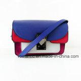 De modieuze Manier van de Ontwerper Dame Cotton Printing Handbags (nmdk-060803)