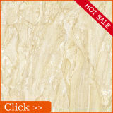 Polised porcelana Gres (26032)
