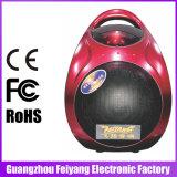 Диктор Bluetooth дешево популярного горячего сбывания Feiyang/Temeisheng цветастый миниый с светом СИД--F905