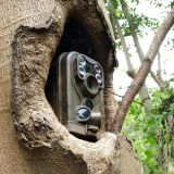 Ereagleのハンチングそして機密保護のための広角の赤外線夜間視界の野性生物のカメラ