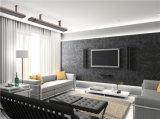 Teto radiante infravermelho industrial calefator de painel elétrico Home montado