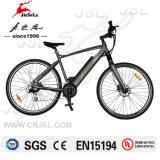 MTBのサドル250Wブラシレスモーター36V電気土の自転車(JSL037G)