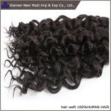 Capelli umani ricci di estensione di trama dei capelli umani della Cina