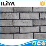 Stone ベニヤ、Stone タイル、壁のクラッディングの装飾、Artificial Culture 石、タイルの人工的な煉瓦(YLD-18037)