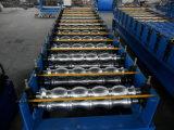 Roulis de tuile de toit de tôle d'acier formant la ligne Chine de machine
