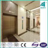 Ascenseur de somme avec le plafond suspendu de luxe