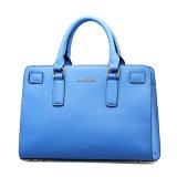 Modernes Exquisite Handbags für Ladied (6170)