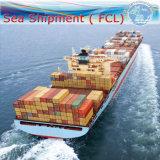 De Dienst van de Vrachtvervoerder van de logistiek, Het Internationale Verschepen FCL (20 '' 40 '')