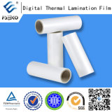 Sticky superbe Plastic Thermal Laminating Film pour Special Printing