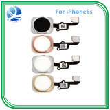 Bouton Home Quality pour iPhone 6s Home Key Flex Cable