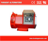 Alternadores sin cepillo 6.5kw de Faraday