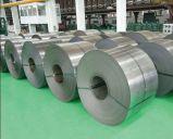 Qualität heißes BAD galvanisierter Stahlring