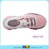 De hete Schoenen van de Sport van de Winkel van de Vrouwen van de Verkoop