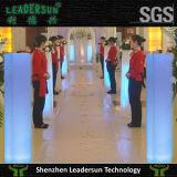 Decorazione chiara di cerimonia nuziale del regalo del partito del LED (LDX-X02)