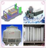 20tons/Day de Machine van het Ijs van het Blok van de Ijsblokjes van het roestvrij staal