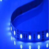 Luz de tira flexible amarilla caliente del aluminio LED de 12V SMD 3528 baratos