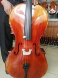 O pássaro europeu de Sinomusik Eyes o violoncelo Handmade mestre do bordo