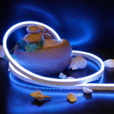 Neonseil-Licht der Qualitäts-DC24V SMD5050 RGB für im Freiendekoration