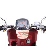 2車輪2500Wの小型電気スクーター