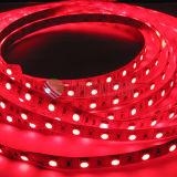 Tira flexível 60LEDs/M do diodo emissor de luz da alta qualidade SMD5050 com preço do competidor