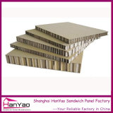 Qualitäts-phenoplastische Stahlsandwich-Panel-China-Fertigung