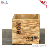 Cimento coreano do Flowerpot mais Flowerpot da carne o Flowerpot do sinal da caixa