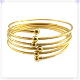 De Armbanden van het Roestvrij staal van de Toebehoren van de Manier van de Juwelen van de manier (BR252)