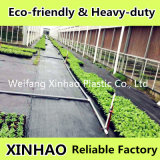 PP Woven Weed Control MatかFabric/Ground Cover/Landscape Fabric