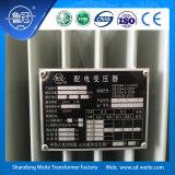 S13, trasformatore a bagno d'olio di distribuzione di sigillamento completo a tre fasi 11kv
