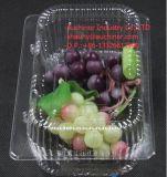 Blasen-Wegwerfplastikkuchen-Behälter-Käse-Verpackungs-Kasten-Gebäck-Verpacken