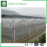 Agricoltura/tenda commerciale del film di materia plastica con il sistema di raffreddamento