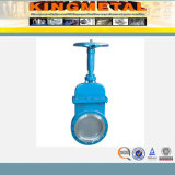 Clases de Gate Valves From China Largest Valve Manufacturer