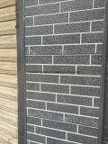 """Gravé en relief faisant face au panneau """"sandwich"""" isolé décoratif de mur de façade"""
