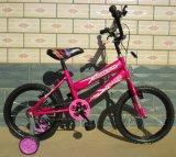 Preiswertes Kind-Fahrrad-Afrika-Markt-Kind-Fahrrad (FP-KDB-17061)