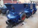 Hohe Leistungsfähigkeits-vertikale doppelte Absaugung-zentrifugale Wasser-Pumpe