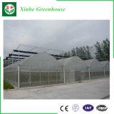 中国の製造者の熱い販売の生産のフィルムのトンネルの温室