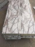 Comitato di parete metallico impresso grano di marmo per le Camere prefabbricate della struttura d'acciaio, costruzioni, ville