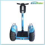 LCD Screen Mobility Electric Standing Scooter Sistema de bateria dupla E-Scooter