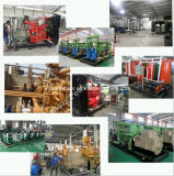 Gerador do biogás da potência do quilowatt Elelctric da eficiência elevada 300 do Ce