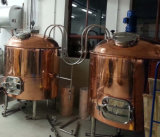 700L de Apparatuur van de Brouwerij van Homecoppercladding