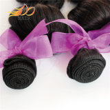 高品質の緩い波のブラジルの毛のバージンの人間の毛髪のよこ糸