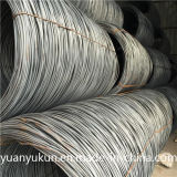 ASTM AISI Standard SAE 1006/1008/1010 Steel Wire Rod 5.5mm