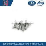 Нержавеющая сталь M4-M24 болтов крыла DIN315 высокого качества, 304, 316