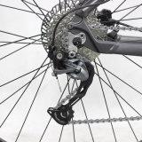 يشبع تعليق وسط محرّك 29 بوصة [متب] جبل درّاجة كهربائيّة
