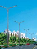 La mejor luz de calle solar del precio los 4m poste 20W LED