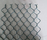 Black Coated Chain Wire Mesh em Roll