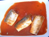 Fish enlatado Fillet Mackerel em Oil