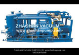 2BE1703 de vloeibare Vacuümpomp van de Ring met Ce- Certificaat