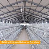 Гальванизированное оборудование стального материального слоя цыплятины Q235 в Нигерии